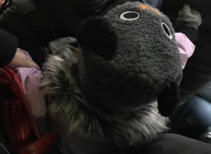 Девочке-инвалиду с «мокнущей» головой отказались уступать место в маршрутке Ростова
