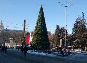 В Ростове-на-Дону установили главную новогоднюю елку