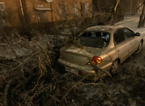 Обледеневшее дерево обломилось пополам и размозжило припаркованную у дороги иномарку под Ростовом