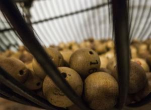 Ростовчанин, выигравший лотерею, радовался и плясал, поняв, что погасит ипотеку
