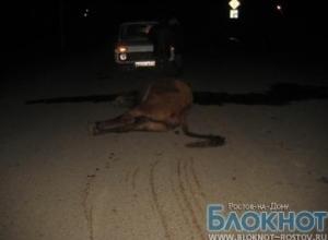 В Заветнинском районе в ДТП с коровой погибла женщина