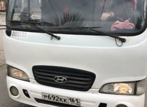 Водитель маршрутки попытался задавить пешеходов на зебре в Ростове