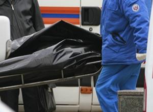 Мать пятерых детей погибла под колесами автомобиля на трассе Ростовской области