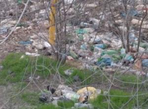 За мусор на улицах города незадачливых любителей свинского образа жизни штрафовали две тысячи раз в Ростове