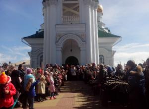 В честь Вербного воскресенья праздничные службы прошли во всех храмах Ростовской области