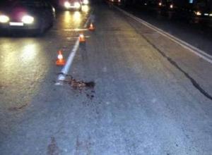 Мужчина скончался в мучениях под колесами фургона в Ростовской области