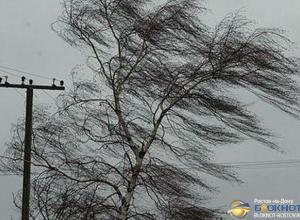 В Ростовской области ожидается усиление ветра до 27 м/с