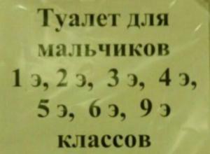Ростовскую школу с туалетом для «элитных» учеников проверили после публикации «Блокнота»