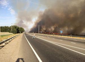 В Ростовской области вдоль трассы М-4 «Дон» бушует пожар. Видео