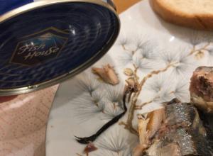 Крысиный хвост продали в супермаркете Ростова вместе с консервированной сайрой
