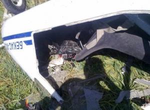 В Ростовской области разбился легкомоторный самолет «Бекас»: пилот погиб