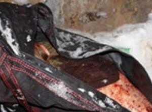 В Ростове у пассажира автобуса в сумке найден расчлененный труп