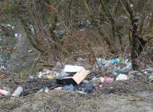 Трупами собак и строительным мусором забросали целебный родник в Ростовской области