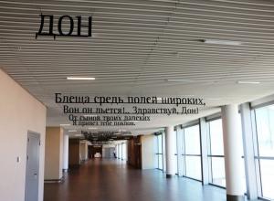 Пассажирам аэропорта «Платов» в Ростове предлагают насладиться Пушкиным и картинами в стиле «казачий поп-арт»