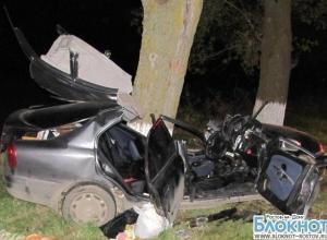 На трассе Ростов-Таганрог «Митсубиси» врезалась в дерево, погибли 2 человека