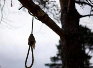 В Матвеевом Кургане найден повешенным 8-летний ребенок
