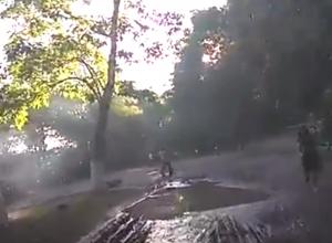 Превратившийся в липкое и стыдное бездорожье парк «Дружбы» сняли на видео возмущенные ростовчане