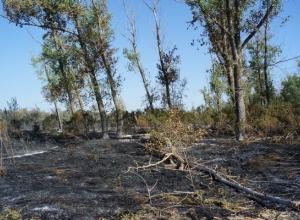 Крупный пожар в промзоне Ростова-на-Дону ликвидирован