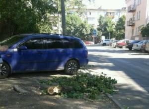 Опасно повисшую на проводах ветку на улице Ленина убрали после публикации «Блокнота»