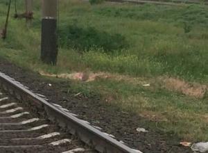 36-летнюю мать и двоих ее маленьких детей переехал поезд под Ростовом