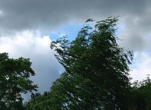 На выходных в Ростовской области резко ухудшится погода