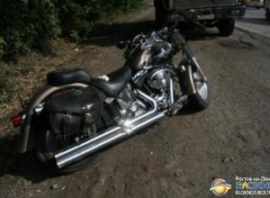 В Ростовской области байкер на мотоцикле Harley Davidson врезался в мусоровоз