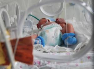 За шокирующую смерть новорожденной тройни в Ростове возьмется независимая экспертиза