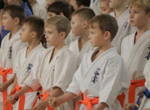 В Ростове прошел первый региональный турнир по каратэ киокусинкай