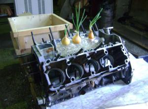Суровые металлурги с завода Ростова «обедали» луком, выращенном в двигателе КамАЗа