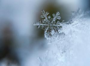 Ростовчане готовы встретить первый снег?