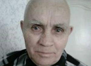 Пенсионер в темных одеждах пропал в Ростовской области