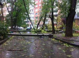 В Ростовской области из-за ЧС более 120 населенных пунктов остаются без света