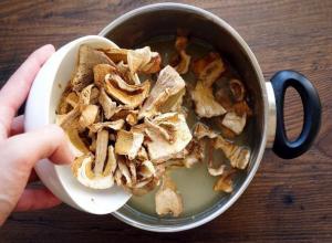 Огромный мерзкий червяк в грибах из Италии шокировал руководство ростовского ресторана