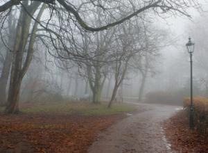 Облачность и туман накроют Ростов в последний рабочий день недели