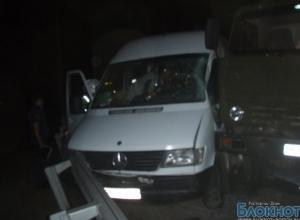 В Ростовской области КамАЗ столкнулся с микроавтобусом: 12 пострадало, 1 умер