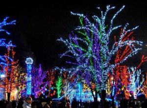 На украшение города к новогодним праздникам власти Ростова потратят более 19 миллионов рублей