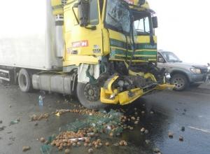 В нескольких ДТП в Ростовской области пострадали три человека. Фото