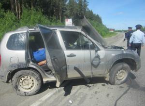 Мальчик-подросток потерял свою мать в жутком ДТП с микроавтобусом в Ростовской области