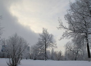 В Ростове-на-Дону ожидаются морозы до -20 градусов