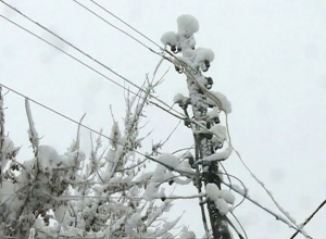 Экстренное предупреждение объявлено в Ростове из-за налипания мокрого снега