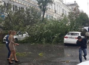 Наводнение и ураган с ветром до 90 км/ч обещают Ростову в ближайшие часы