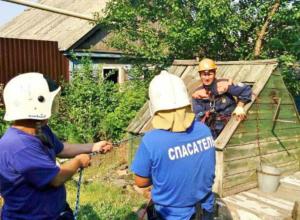 Мертвыми котятами отравили воду в питьевом колодце живодеры Ростовской области