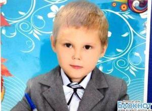 Пропавший в Ростовской области первоклассник найден: следственные органы проводят проверку