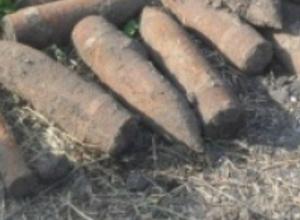 Взрывной «клад» из прошлого обнаружил сельчанин возле хутора в Ростовской области