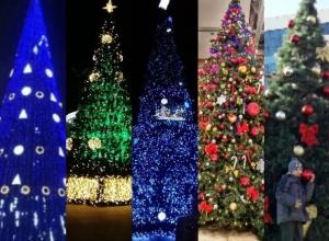 Голосование за звание «Самая красивая новогодняя ёлка Ростова-2017» объявляется открытым!