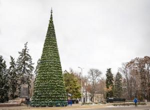 В целях экономии центр Ростова будет украшать искусственная 5-летняя елка