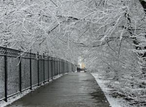 Невероятный для лета мороз придет в Ростовскую область