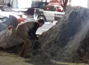 Воровать песок пакетиками стала таинственная ростовчанка средних лет с Большой Садовой