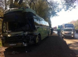 В Ростовской области рейсовый автобус столкнулся с большегрузом: двое пострадавших