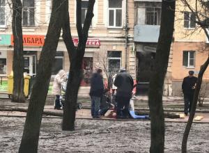 Гнилое дерево убило мать двухлетнего ребенка в Ростове